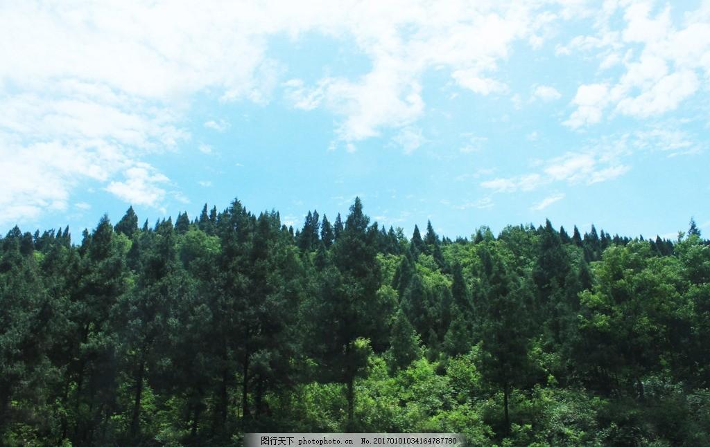 远山 自然美景 森林城市 绿色 远景 风景 郊外 蓝天白云 草地