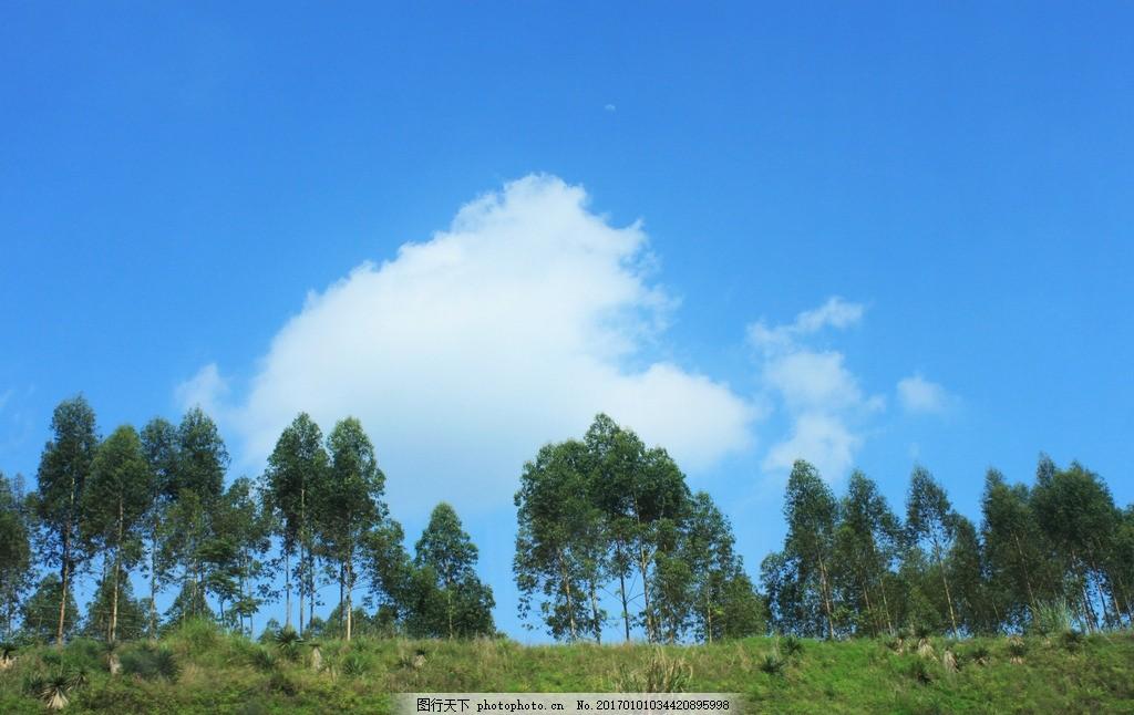 自然美景 森林城市 绿色 远景 风景 郊外 蓝天白云 草地 农村 健康