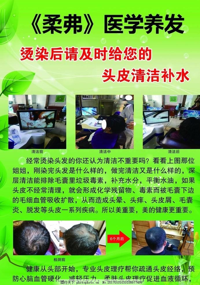 护发 护发海报 绿色模板 养发 养发海报 美容 美发 海报 设计 广告