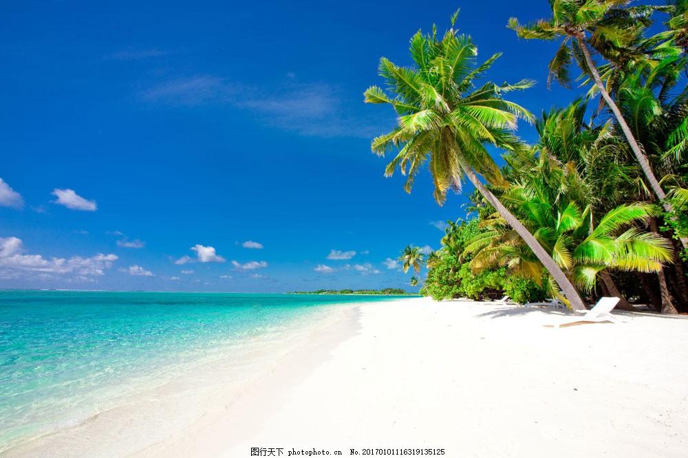 海边沙滩风景 海边沙滩风景图片素材 大海 椰子树 度假 大海图片