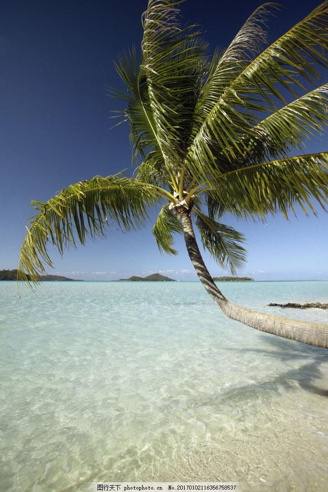 美丽海滩风景图片