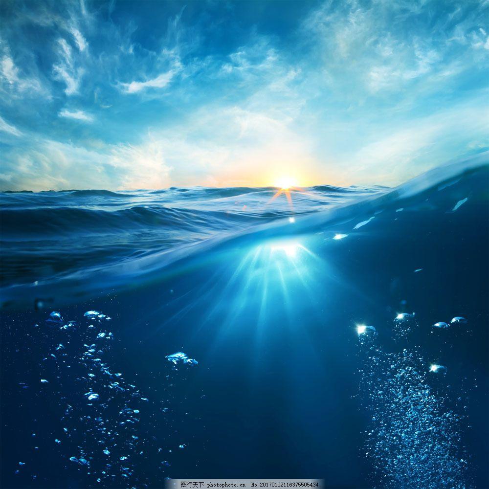 海底里的生物 海底里的生物图片素材 大海风景 海洋风景 海面风景