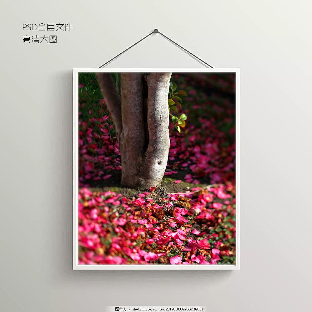 植物摄影风景无框装饰画 背景墙 背景图 抽象背景图 室内背景图
