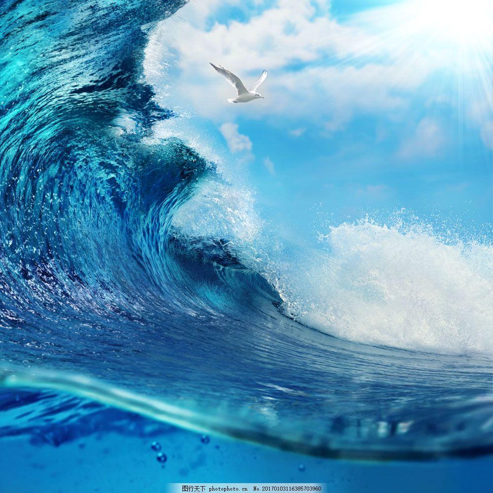 海鸥与海浪 海鸥与海浪图片素材 蓝天 白云 天空 大海风景 海洋风景