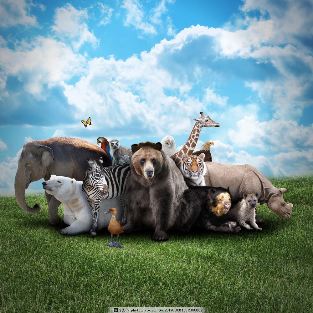 草地上的动物 草地上的动物图片素材 蓝天 白云 棕熊 长颈鹿 斑马