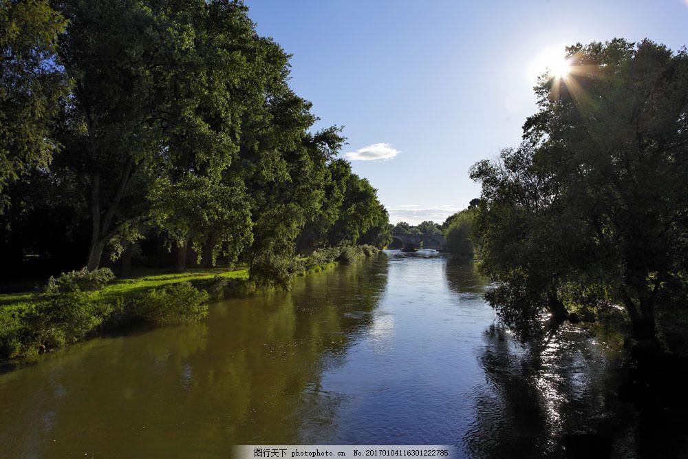 河边树林风景图片