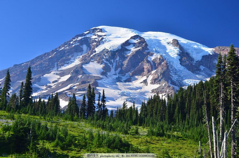 草地雪山风景图片