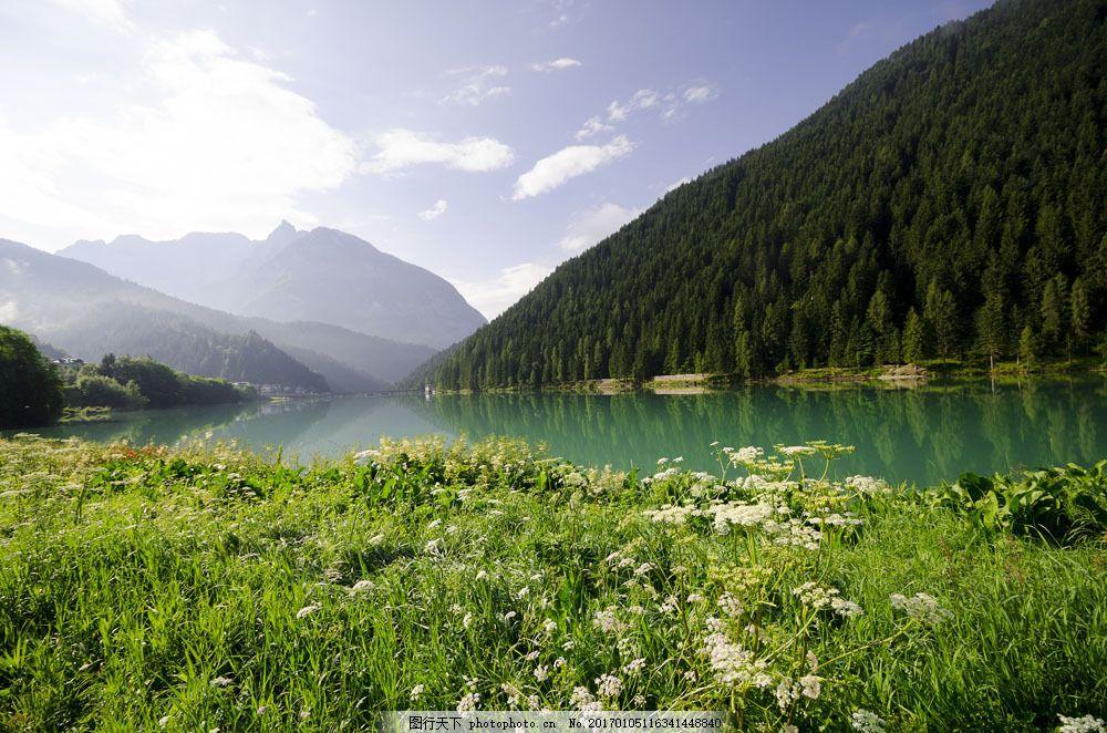 美丽森林湖泊风景图片