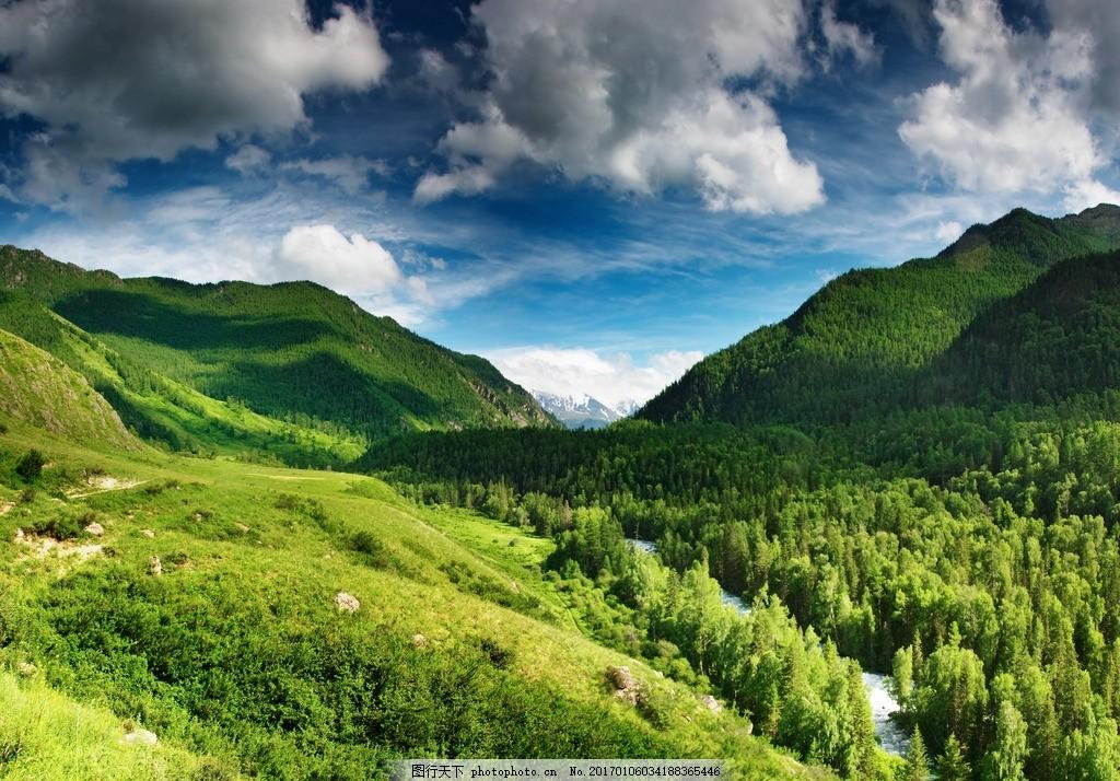 绿色森林景色 绿色 森林 景色 蓝天 白云 高山 树木 树      摄影