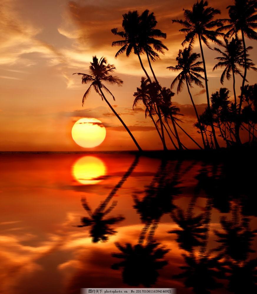 海面 椰子树 海洋 太阳 落日 倒影 风景图片 大海图片 风景图片 图片