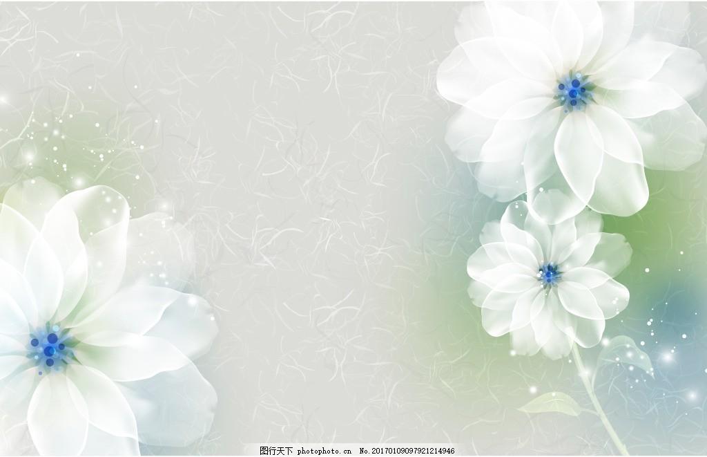 白色花卉装饰背景,壁纸 风景 高分辨率图片 高清