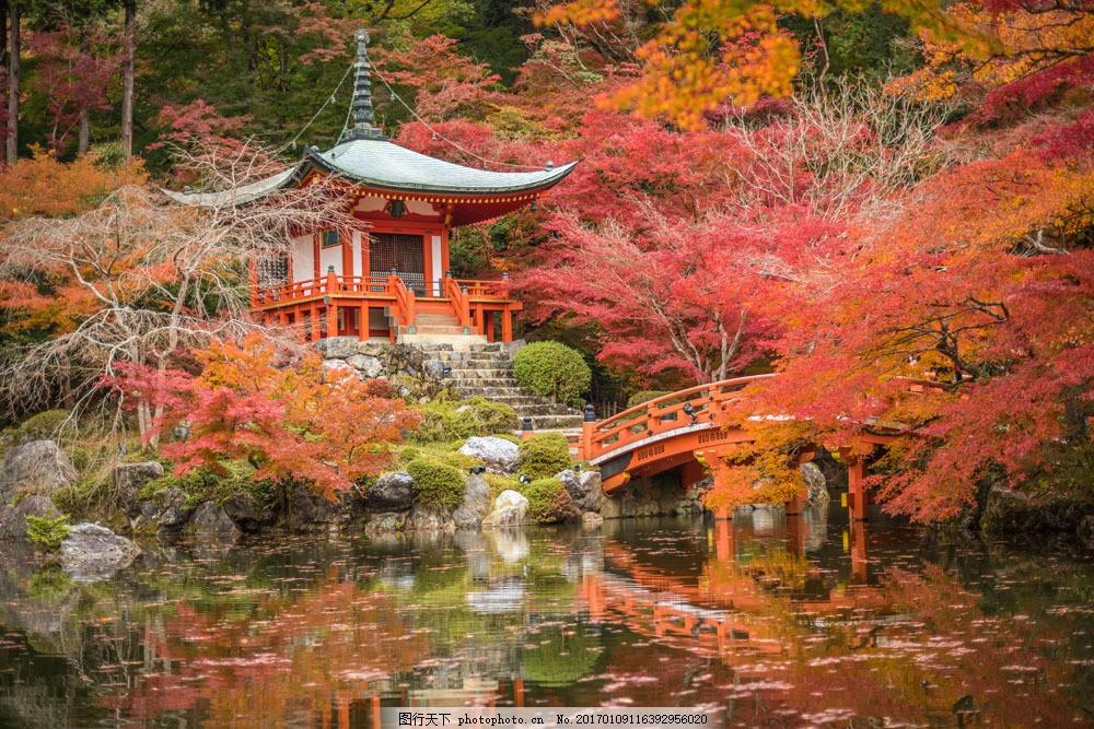日本旅游景点 日本风光 美丽风景 风景摄影 风景名胜 名胜古迹 风景