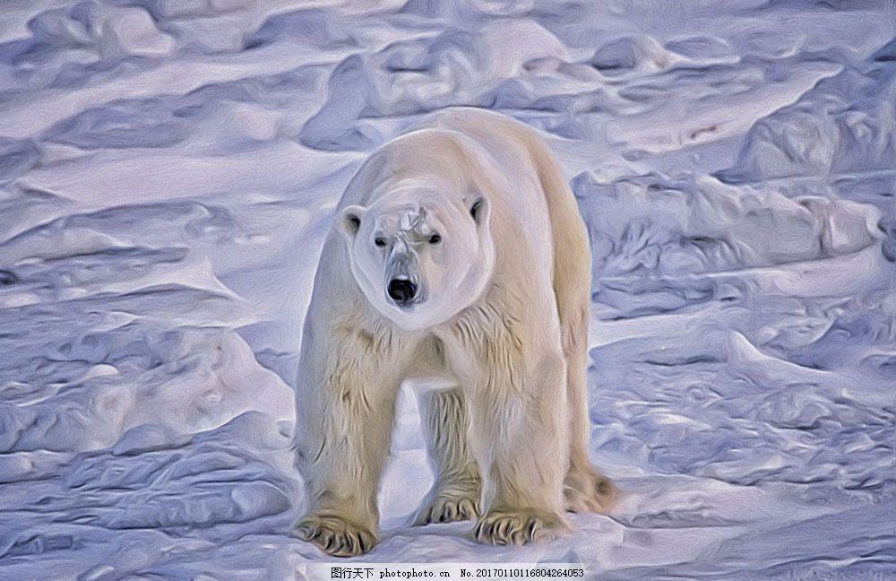 北极熊 北极熊图片素材 动物 野生动物 动物世界 陆地动物 动物摄影