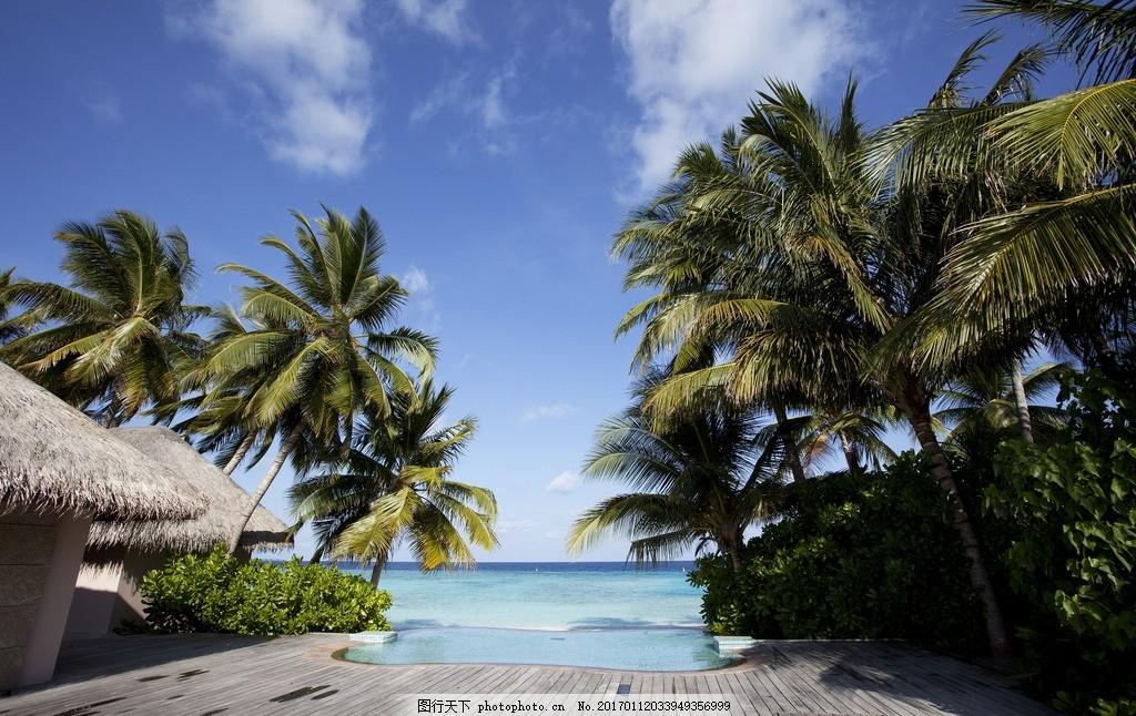 马尔代夫 海岛 海滩 大海 椰子树 椰子 落日 海面 自然风景 度假 旅游