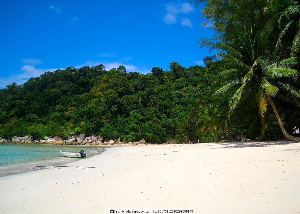 海边的树木 植物 沙滩 海洋 森林 茂盛 天空 晴朗 摄影