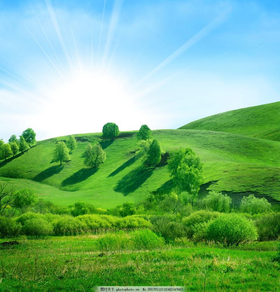 小山坡风景图片 小山坡风景图片图片素材 高清图片 小树 草地 山水