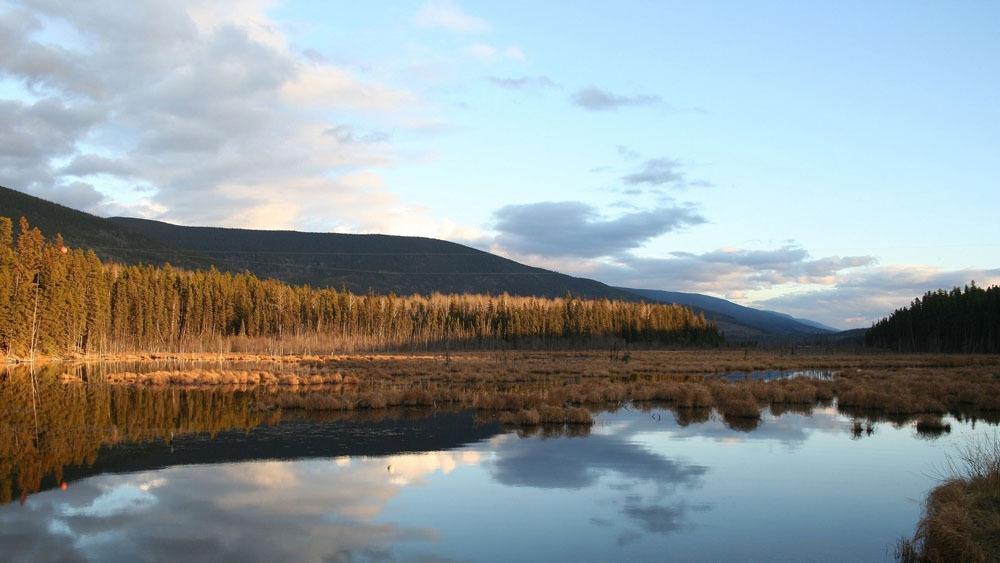 秋天山水风景 秋天山水风景图片素材 湖泊 河流 山峰 高山 大树