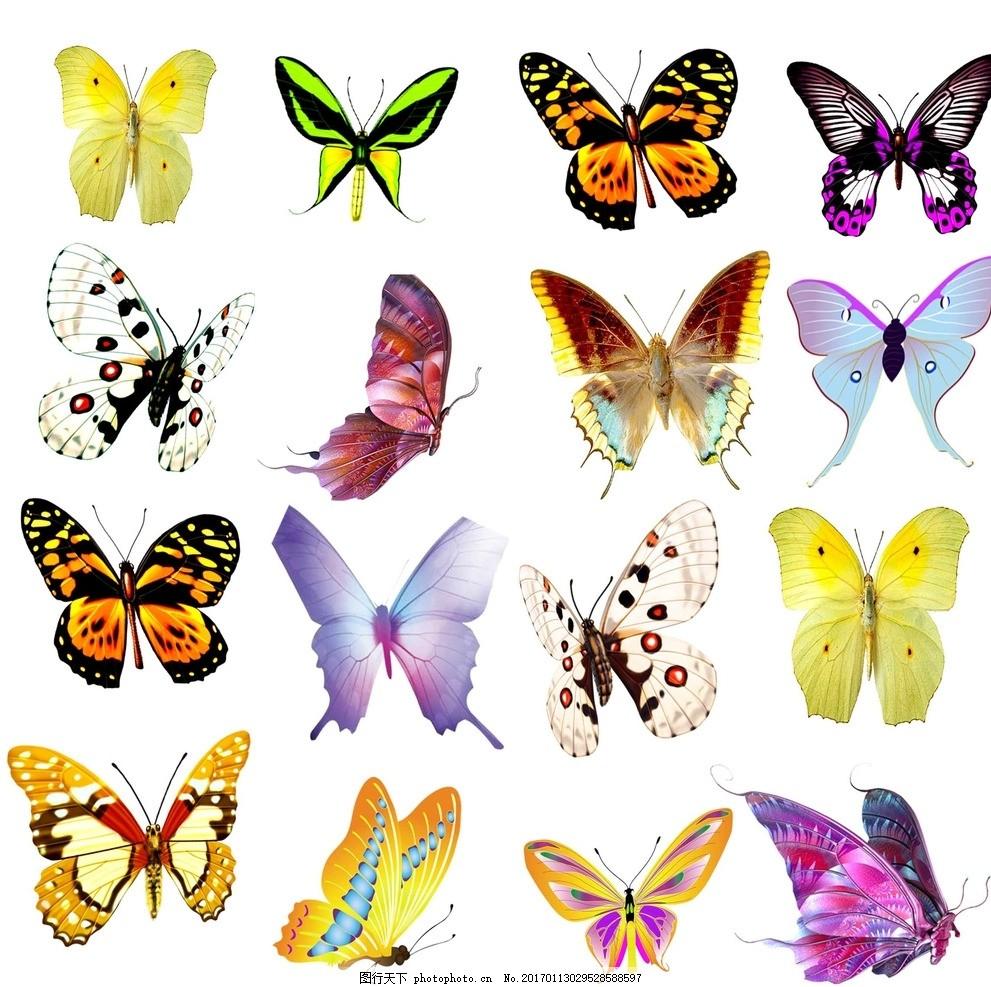 蝴蝶,飞蛾 色彩斑斓 手绘素材 矢量 抽象 可爱卡通-图