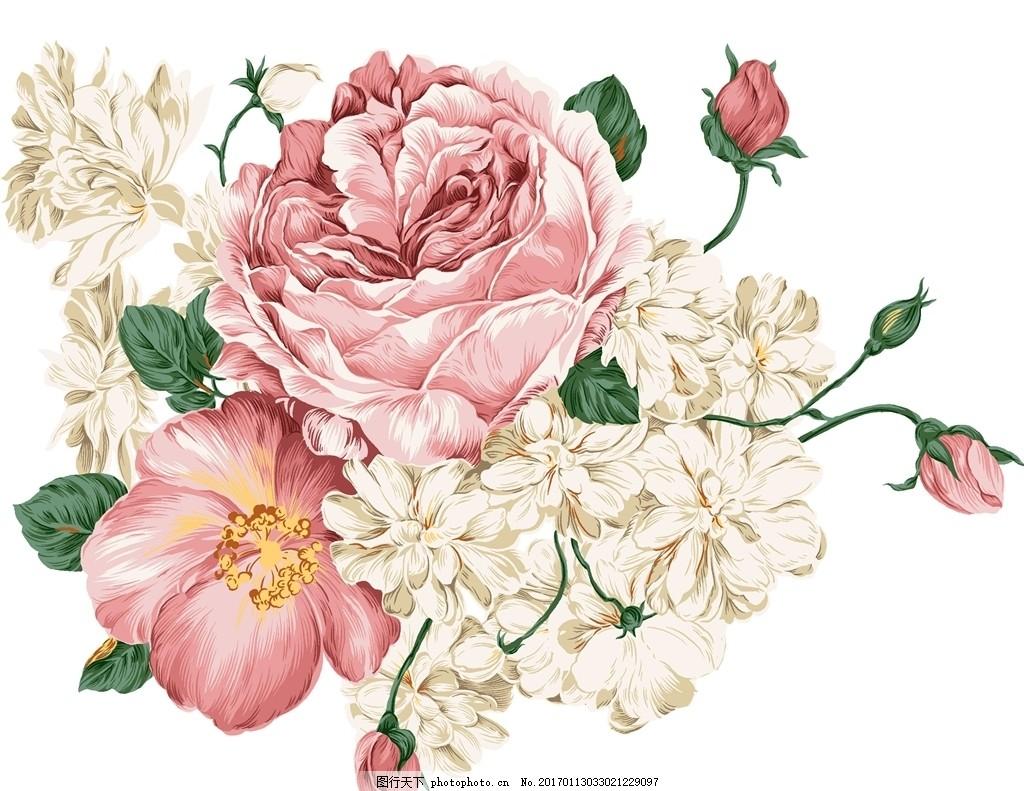 手绘花朵牡丹花 花藤 白色牡丹花 花卉 高清 分层素材 背景图