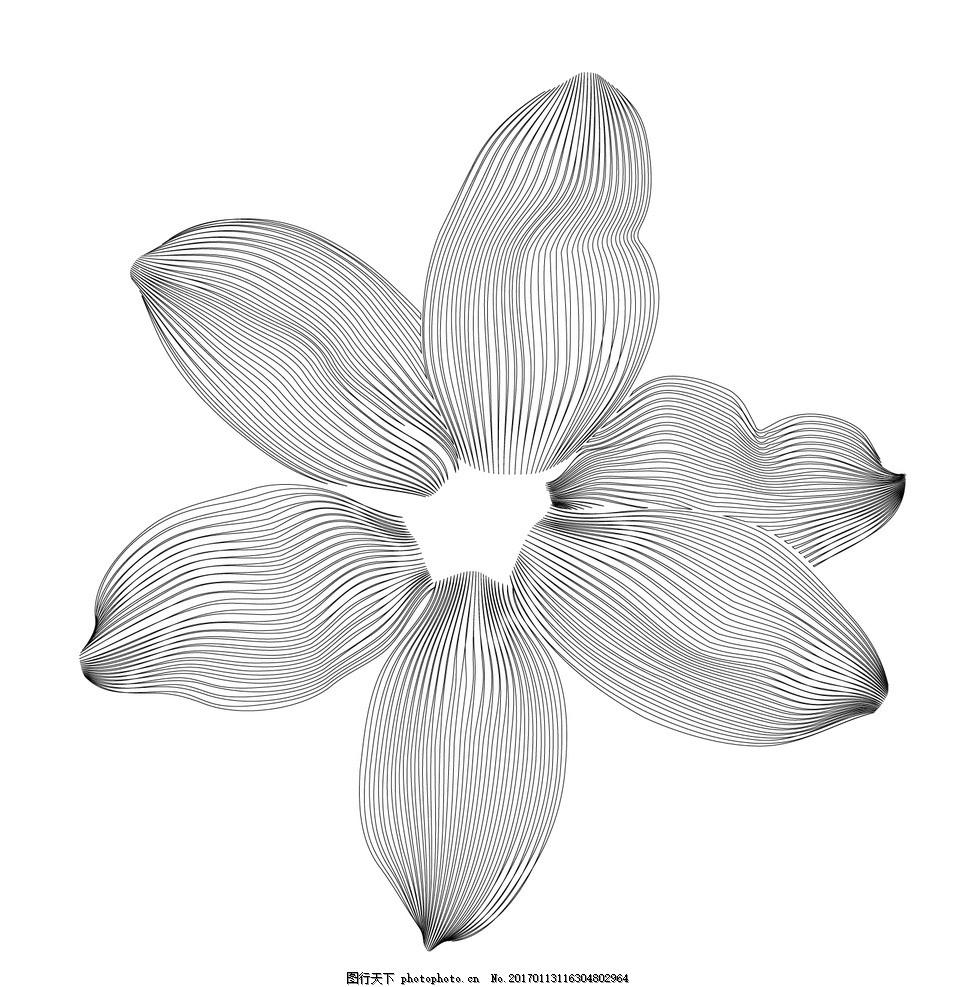 矢量花瓣 花纹 简约 黑白 底纹边框 条纹线条