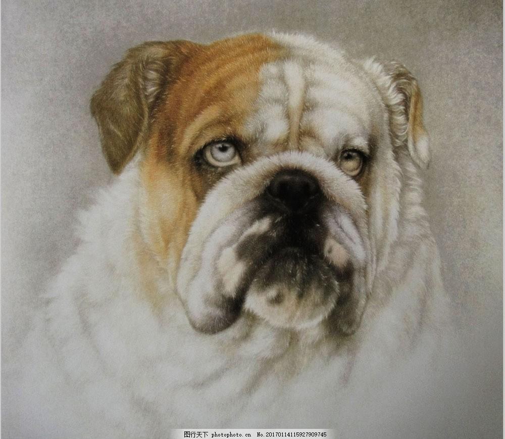 宠物狗油画 宠物狗油画图片素材 动物写生 名画 艺术 绘画 文化艺术