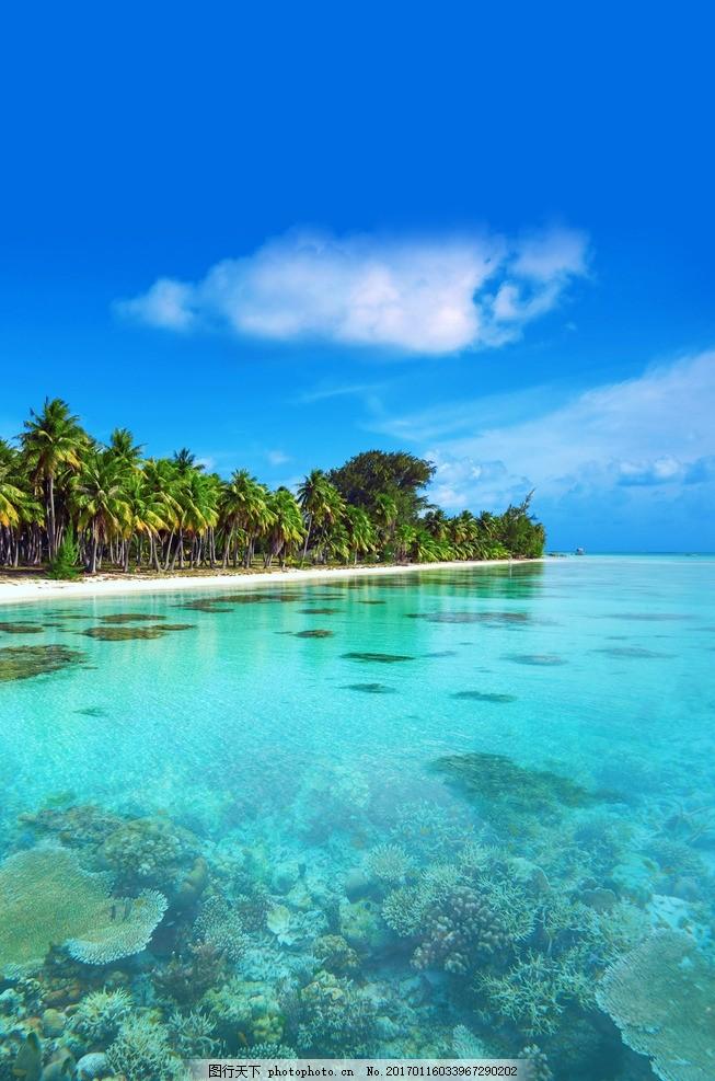 海岛旅游 沙滩 美娜多 帕劳 阳光沙滩 摄影 国外旅游