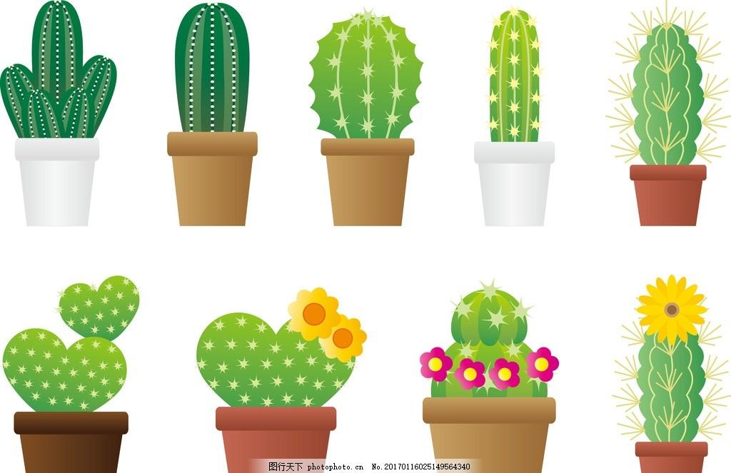 盆栽 小清新 文艺 观赏性植物 仙人掌 仙人球 温室植物 设计 生物世界