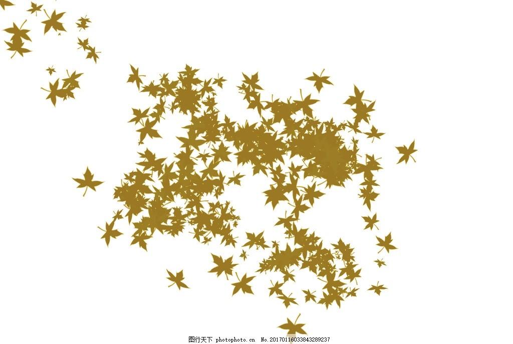 叶子 枫叶 秋天的枫叶 植物 叶子图案 设计 其他 图片素材 300dpi psd