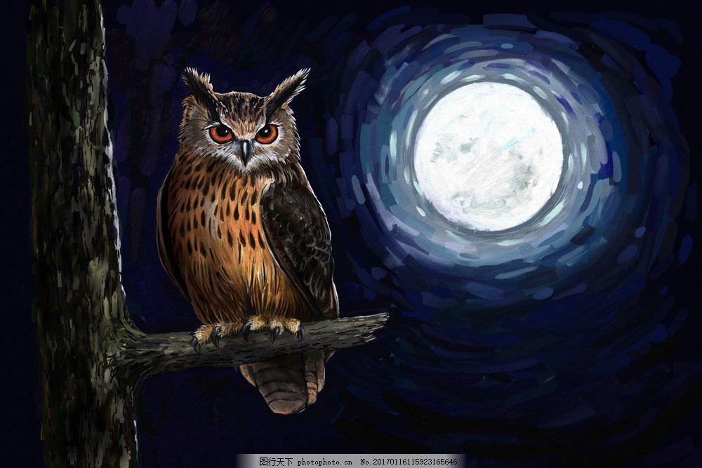 油画作品月光下的猫头鹰 油画作品月光下的猫头鹰图片素材 动物油画