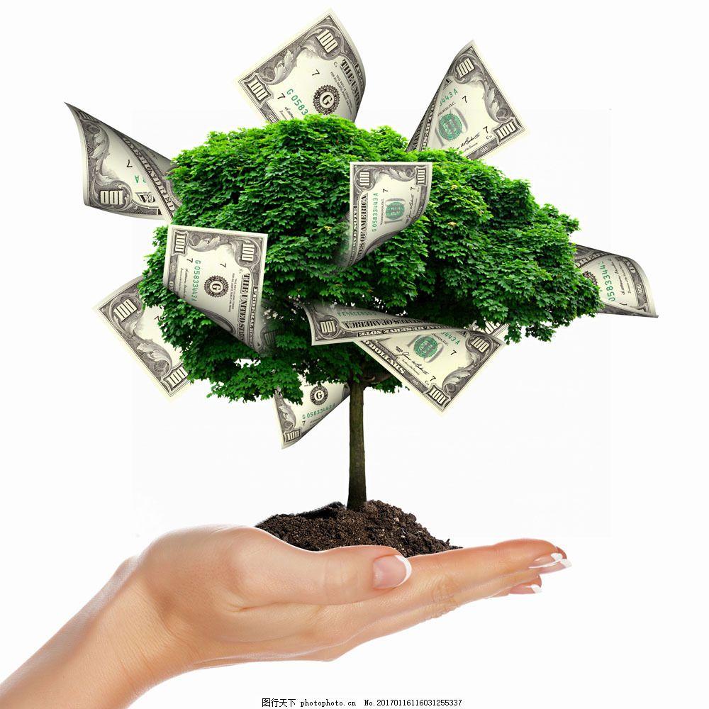 创意美元与树木图片,创意美元与树木图片素材 金钱树