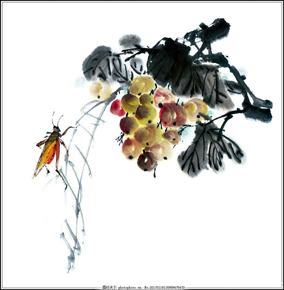 葡萄蛐蛐 葡萄蛐蛐图片素材 花鸟画 中国画 水墨画 丹青 绘画艺术
