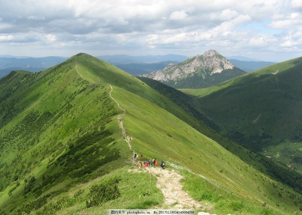 山脊上的植被 阳光 晴朗 天空 景观 自然 森林 山脉 茂盛 摄影