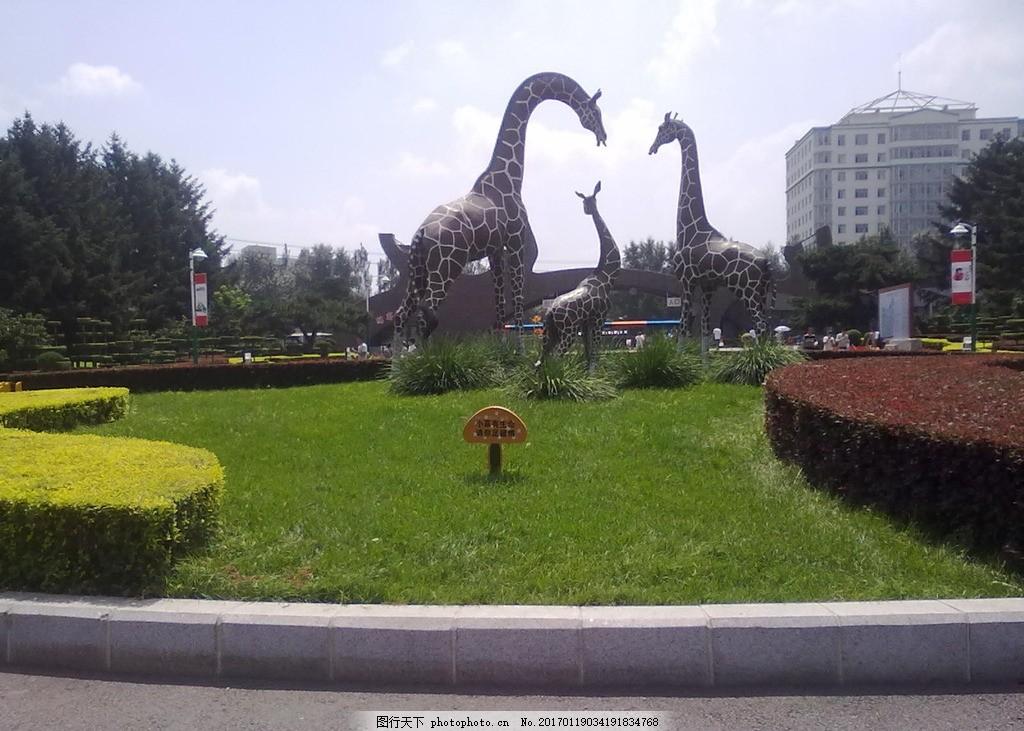 公园一角 公园 绿化 雕塑 花坛 长颈鹿 草地 草坪 摄影 自然景观 自然