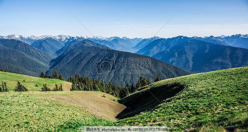 山,自然,天空,森林,树木,草,地平线,雪,高峰,森林