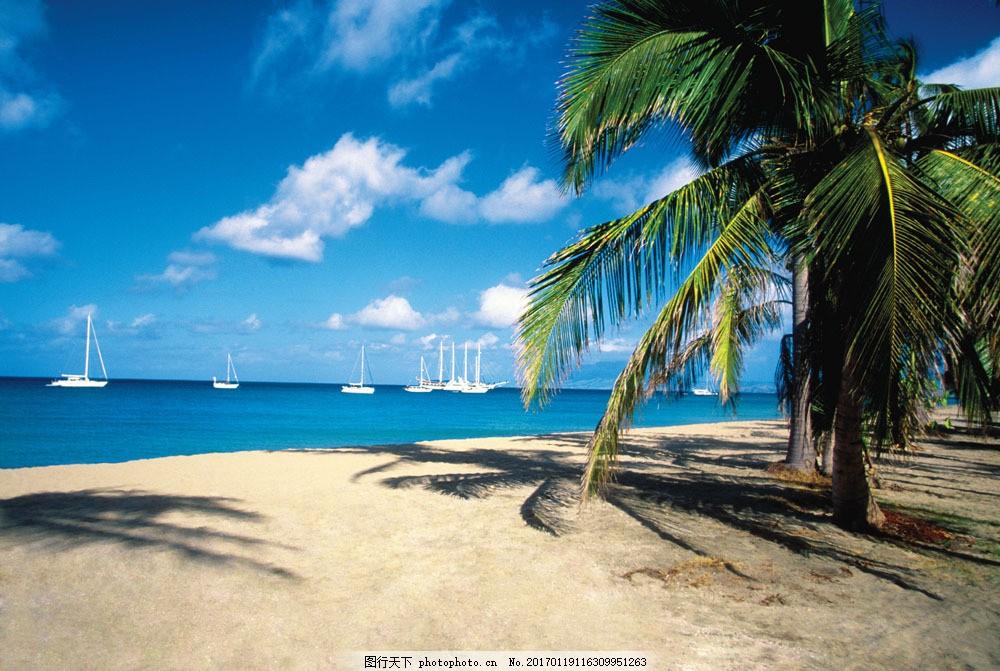 海滩风景 海滩风景图片素材 海洋沙滩风景照 椰子树 旅游摄影 海岸