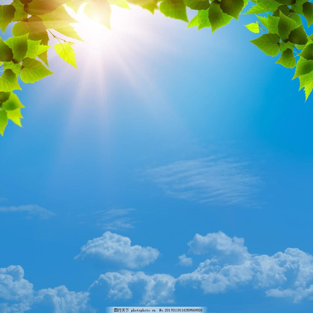植物 光芒 蓝色天空 蓝天白云 叶子 梦幻背景 花草树木 其他风光 风