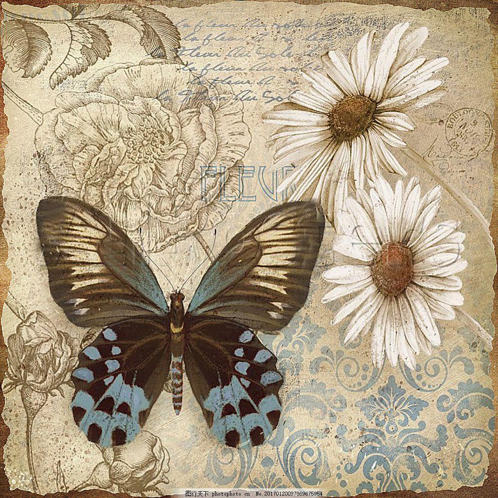 欧式风格蝴蝶花朵