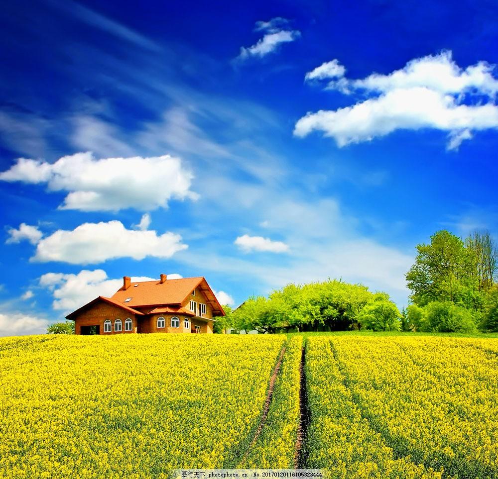 旅行 户外 蓝天 白云 房子 树林 树木 草地 自然 美景 草原 夏日风景