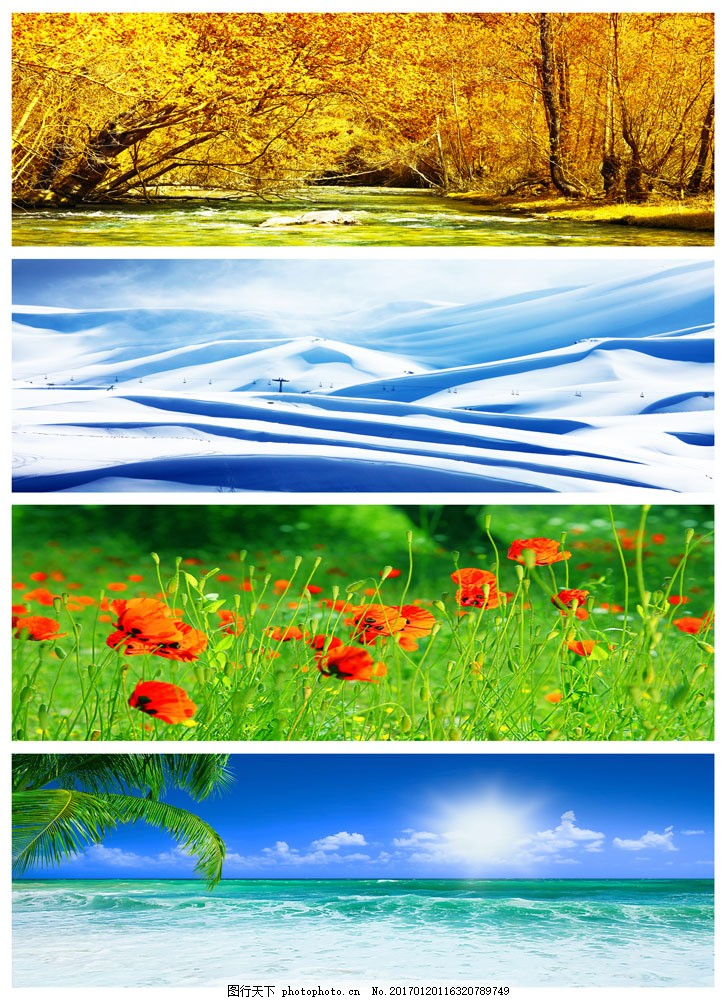 四季风景图片素材 花草四季风景 春天鲜花 夏天沙滩 大海 秋天树木
