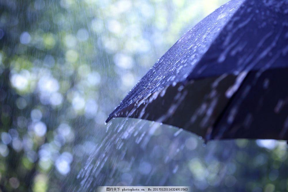 雨中撑起的伞 雨中撑起的伞图片素材 打伞 撑伞 大雨 淋雨 下雨