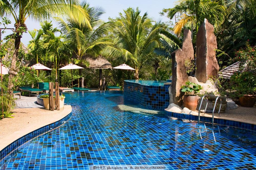 椰树与游泳池 椰树与游泳池图片素材 热带风景 水池 美丽风景 山水