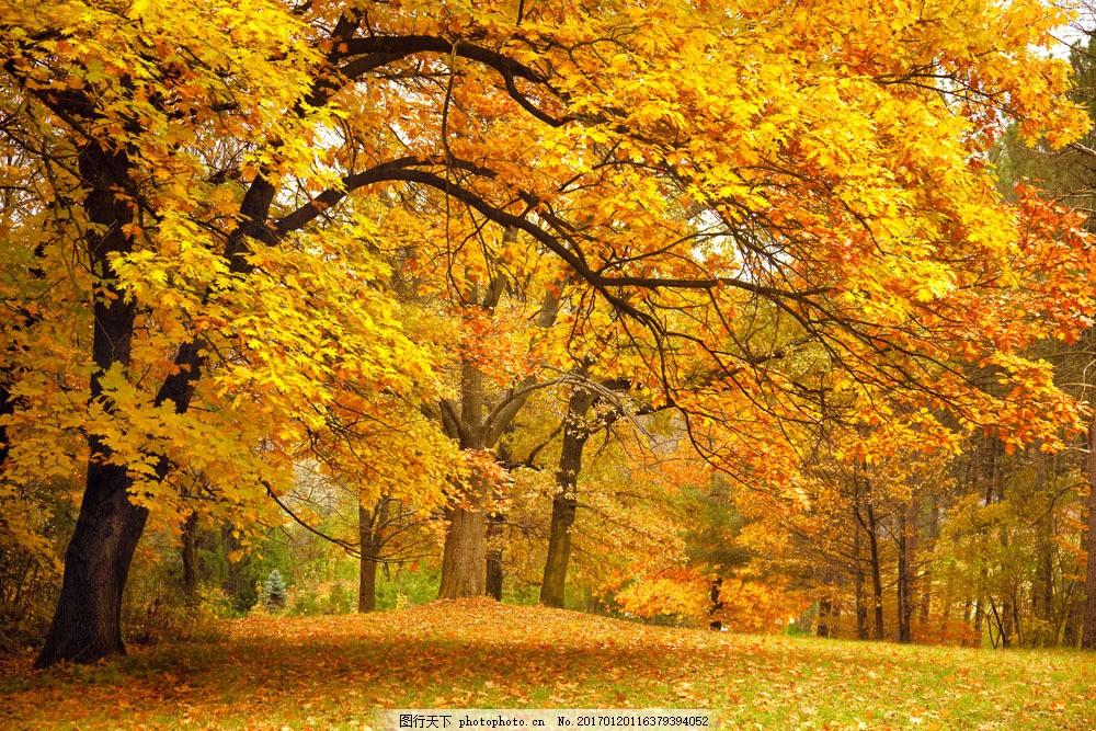 秋天风景摄影 秋天风景摄影图片素材 旅游 自然风光 静谧 大自然