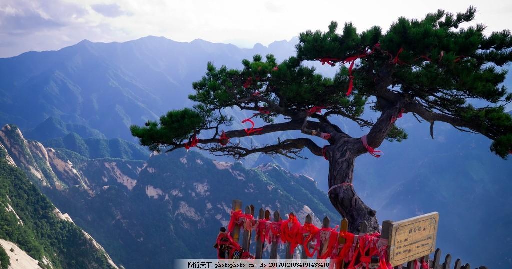 迎客松 华山 景区风景 照片 华山论剑 风景名胜区 摄影 旅游摄影