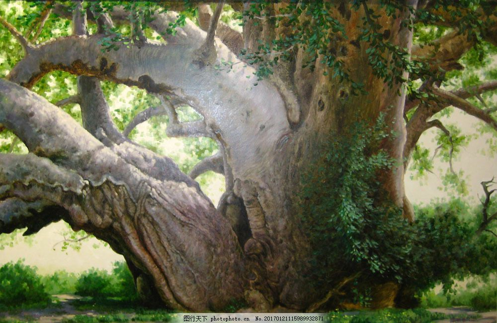 大树 植物 油画 插画 装饰画 无框画 场景 手绘 彩绘 素描 卡通背景