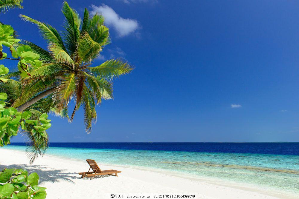 沙滩椰树海边风景图片