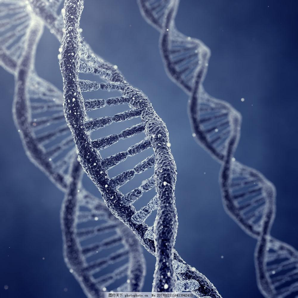 dna双螺旋结构图片素材 dna分子结构 医疗科学 科技背景 dna 双螺旋结