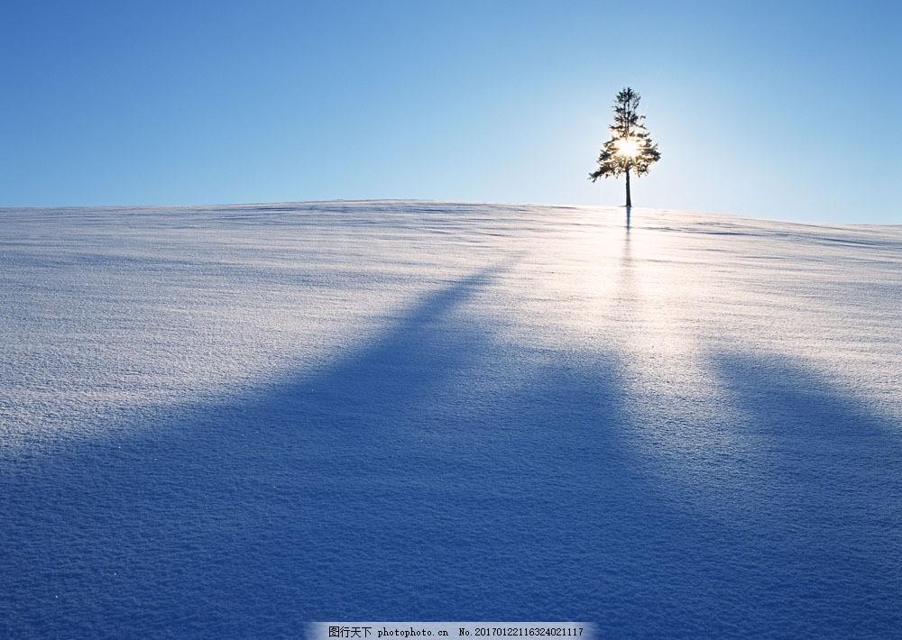 冬季雪景摄影图片素材 四季风景 美丽风景 美景 冬天雪景 雪地 积雪