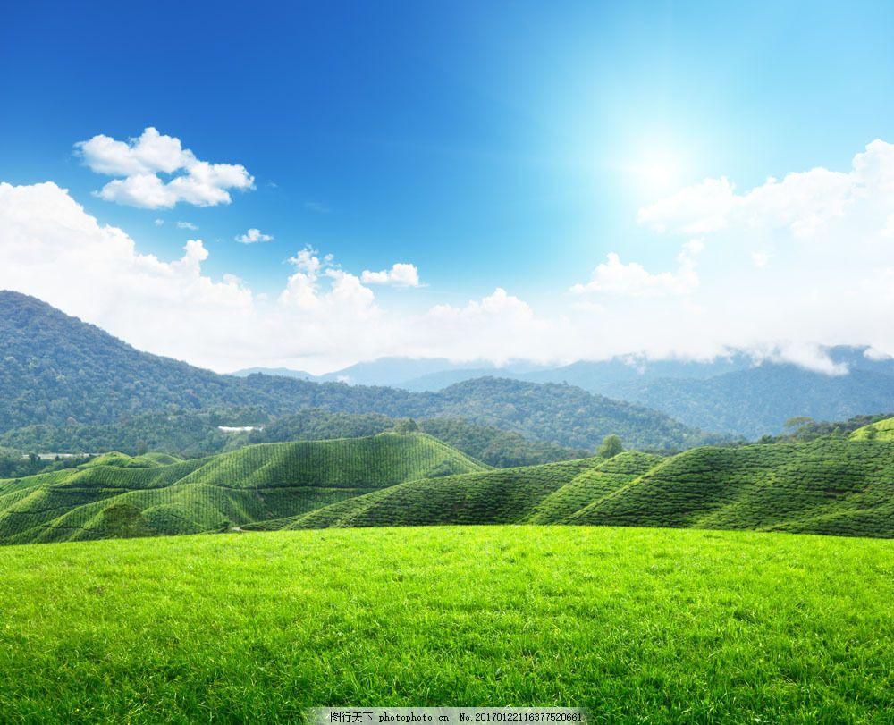 美丽风景 景色 草原 蓝天白云 草地 平原 青草 绿地 蓝天白云 风景