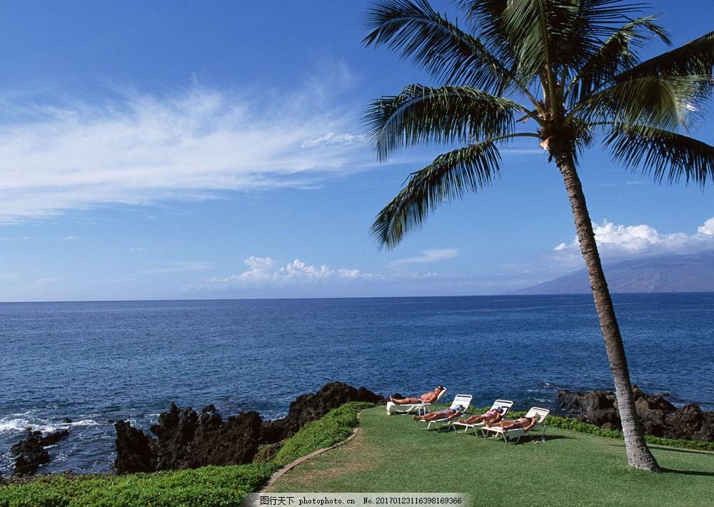 海边日光浴 海边日光浴图片素材 旅游 风景区 夏威夷 夏威夷风光
