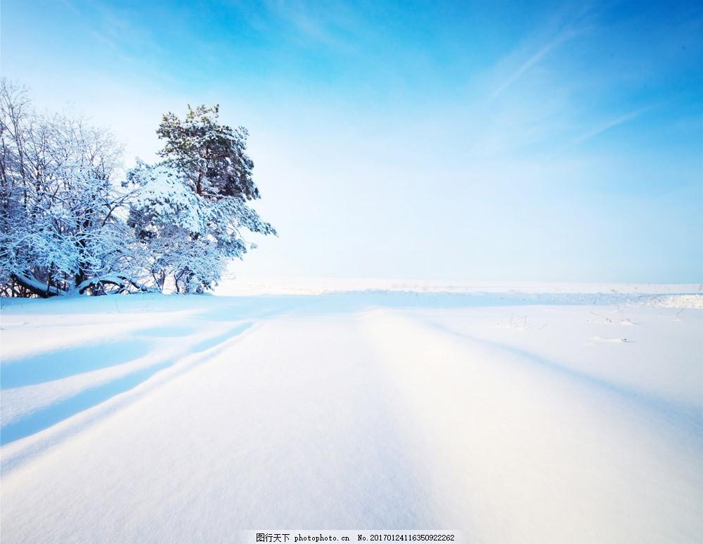 大树 雪山 冬天 冬季 雪景 景区 景观 自然风光 图片素材 山水风景